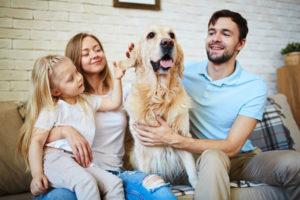 mascotas_familia